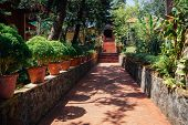 Tiled Walkway With Stairs In Tropical Garden In Indian Yoga Ashram With Flower Pots, Pines And Banan poster