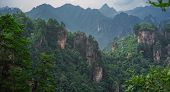 Panoramic View Of The Stone Pillars Of Tianzi Mountains In Zhangjiajie National Park Which Is A Famo poster