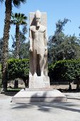 Colossus Of Ramses Ii, Egypt