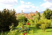Glimpse View Of Florence Cityscape From Park. Panoramic View Of The City Of Florence With Palazzo Ve poster
