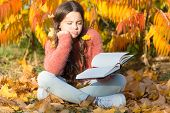 Bored And Tired. Little Child Enjoy Learning At Backyard Or Park. Kid Study With Book. Self Educatio poster