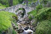 image of poo  - Poo de Cabrales Old rustic village of Asturias Spain - JPG