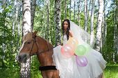 picture of birchwood  - young woman in the dress of fiancee on a horse by a canicular day in a birchwood - JPG