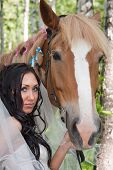 image of birchwood  - young woman in the dress of fiancee next to a horse by a canicular day in a birchwood - JPG