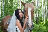 stock photo of birchwood  - young woman in the dress of fiancee next to a horse by a canicular day in a birchwood - JPG