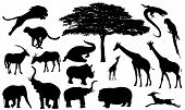 stock photo of hippopotamus  - african wildlife fine vector silhouettes  - JPG