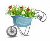 Gardening. Wheelbarrow with flowers