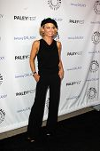 LOS ANGELES - FEB 27:  Kelly Carlson arrives at the PaleyFest Icon Award 2013 at the Paley Center Fo