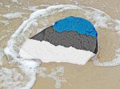 Flag Of Estonia On A Stone On The Beach Of The Baltic Sea