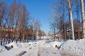 picture of perm  - avenue in a winter park city Perm Russia - JPG