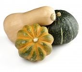 Squash Assortment On White Background