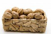 Walnuts in the basket