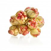 Heap of fresh cloudberry ( Rubus chamaemorus) isolated on white