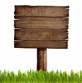 old wood sign board with grass isolated