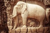 Stone bas relief fragment with elephant. India