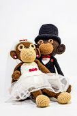 Wedding Monkeys