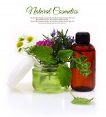 Cosmetic cream jar with herbs inside and essential oil bottle