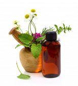 foto of naturopathy  - Mortar and pestle with fresh herbs and essential oil bottle - JPG