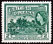 Postage Stamp British Guiana 1954 Botanical Gardens