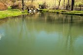 Tingler's Mill Pond, Paint Bank, Virginia