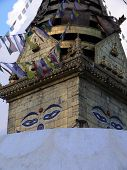 A Monkey Walks The Top Of The Swayambhunath Temple