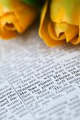 picture of he is risen  - Open Bible with selective focus on the text in Mark 16:6 about Jesus