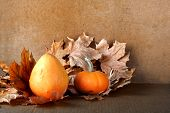 Pile Of Pumpkins With Autumn Foliage On Abstract Background