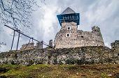 picture of zakarpattia  - Nevitsky Castle ruins Kamyanitsa village 12 km north of Uzhgorod Zakarpattia Oblast Ukraine Built in 13th century - JPG