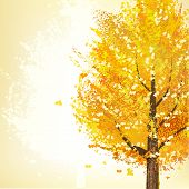 Golden Tree In Autumn
