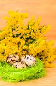 Quail Eggs In The Decorative Bowl