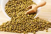 He Mung Or Moong Bean Is The Seed Of Vigna Radiata, Native To The Indian Subcontinent