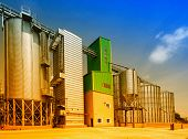 foto of silo  - Big grain silos exterior on sunny day - JPG