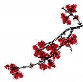 Pintura China de flor roja