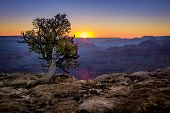 stock photo of grand canyon  - beautiful colorful landscape sunset in grand canyon national park arizona - JPG
