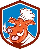Wild Pig Boar Chef Cook Head Shield Cartoon