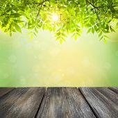 stock photo of green wall  - Wooden board on green natural background - JPG