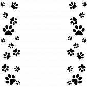 stock photo of paw  - Animal paws border in black and white - JPG