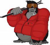 Monkey skier