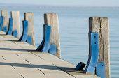 Pier Wood Piles