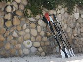 Paddles lined up against rock wall