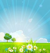Beautiful summer sunrise with green grass, summer flowers and trees.