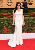 LOS ANGELES - JAN 25:  Ariel Winter arrives to the 21st Annual Screen Actors Guild Awards  on January 25, 2015 in Los Angeles, CA