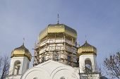 Golden domes of the Orthodox Church of the Holy -Preobrazhenskoy. Belarus