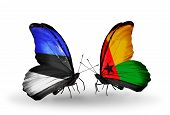 Two Butterflies With Flags On Wings As Symbol Of Relations Estonia And Guinea Bissau