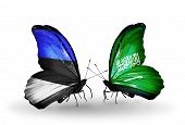 Two Butterflies With Flags On Wings As Symbol Of Relations Estonia And Saudi Arabia