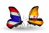 Two Butterflies With Flags On Wings As Symbol Of Relations Thailand And Brunei