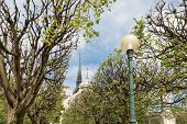 picture of notre dame  - Notre Dame cathedral in springtime Paris France - JPG