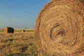 foto of hay bale  - Hay bale in the countryside - JPG