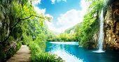 way in deep forest of Croatia