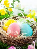 colorful Easter Eggs in a nest on the grass